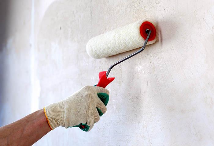 антибактериальная обработка стен против грибка